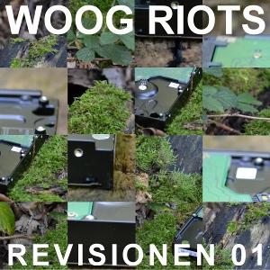 Artist: Woog Riots